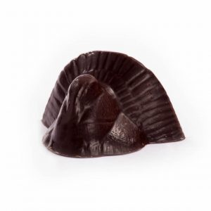 Solid Dark Chocolate Turkey