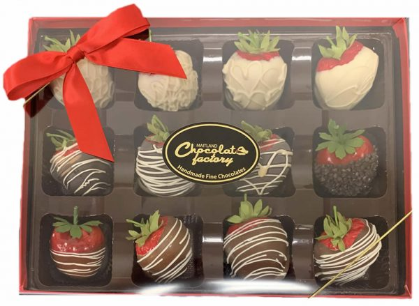 Everyday Chocolate Covered Strawberries Maitland Chocolate Factory